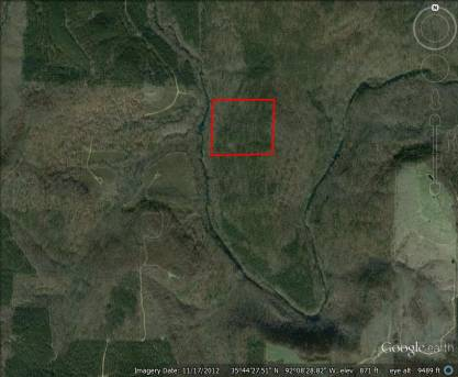 40 acres with marketable timber