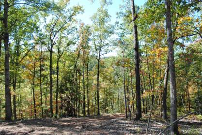 11+/- acres minutes north of town